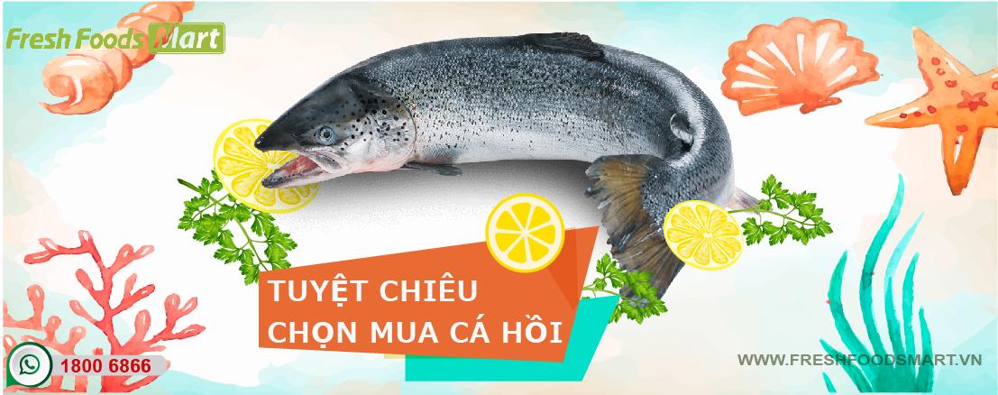 Tuyệt chiêu chọn mua cá hồi tươi ngon đúng chuẩn